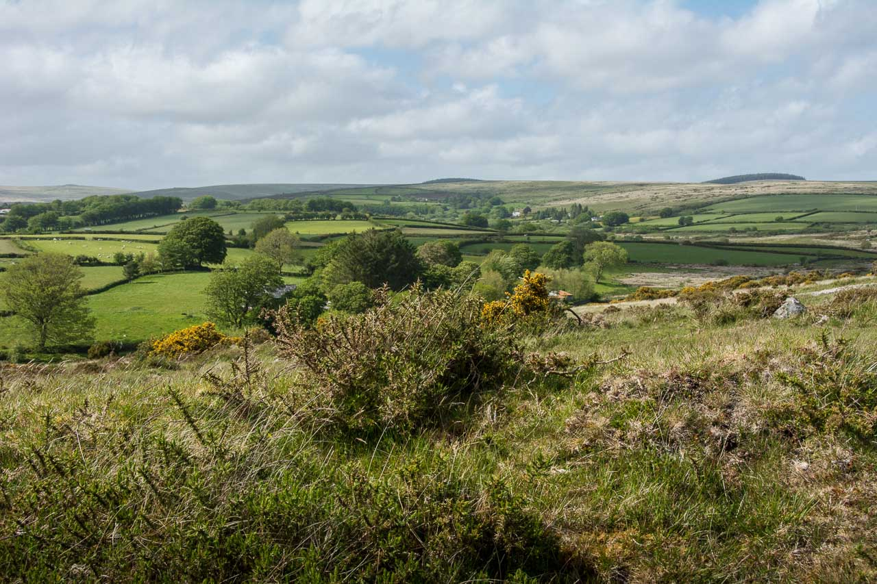 DartmoorNationalpark-3-4575