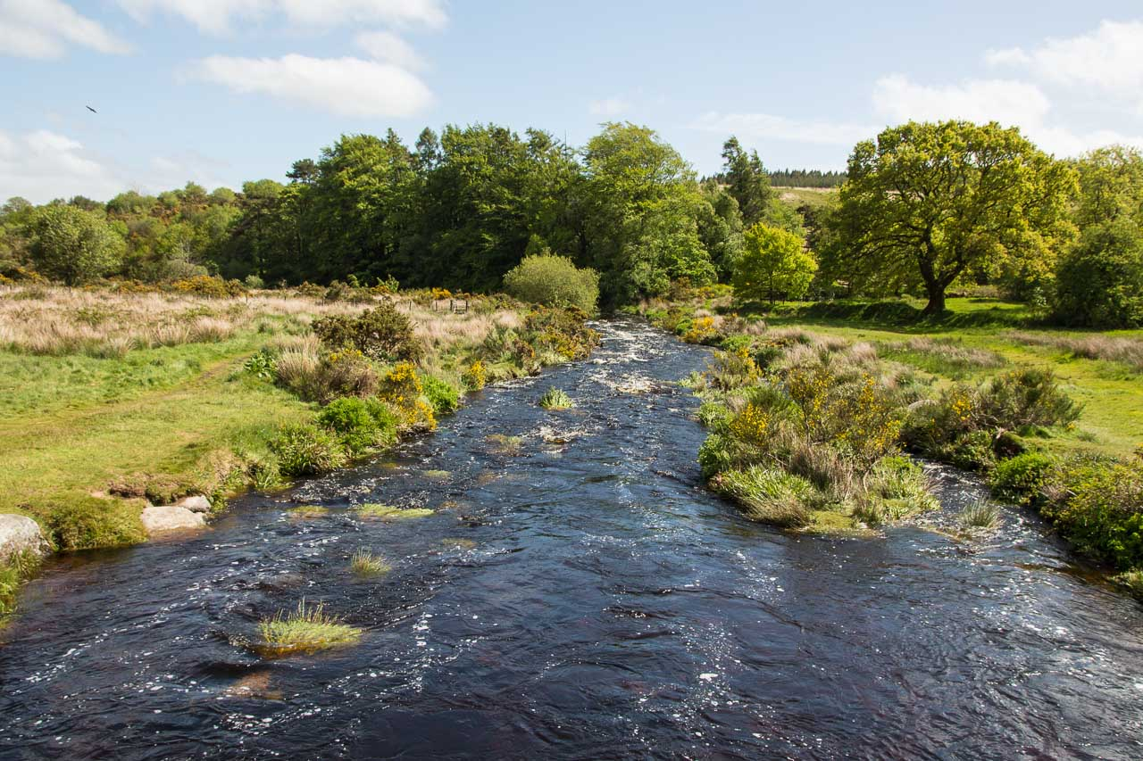 DartmoorNationalpark-32-8446