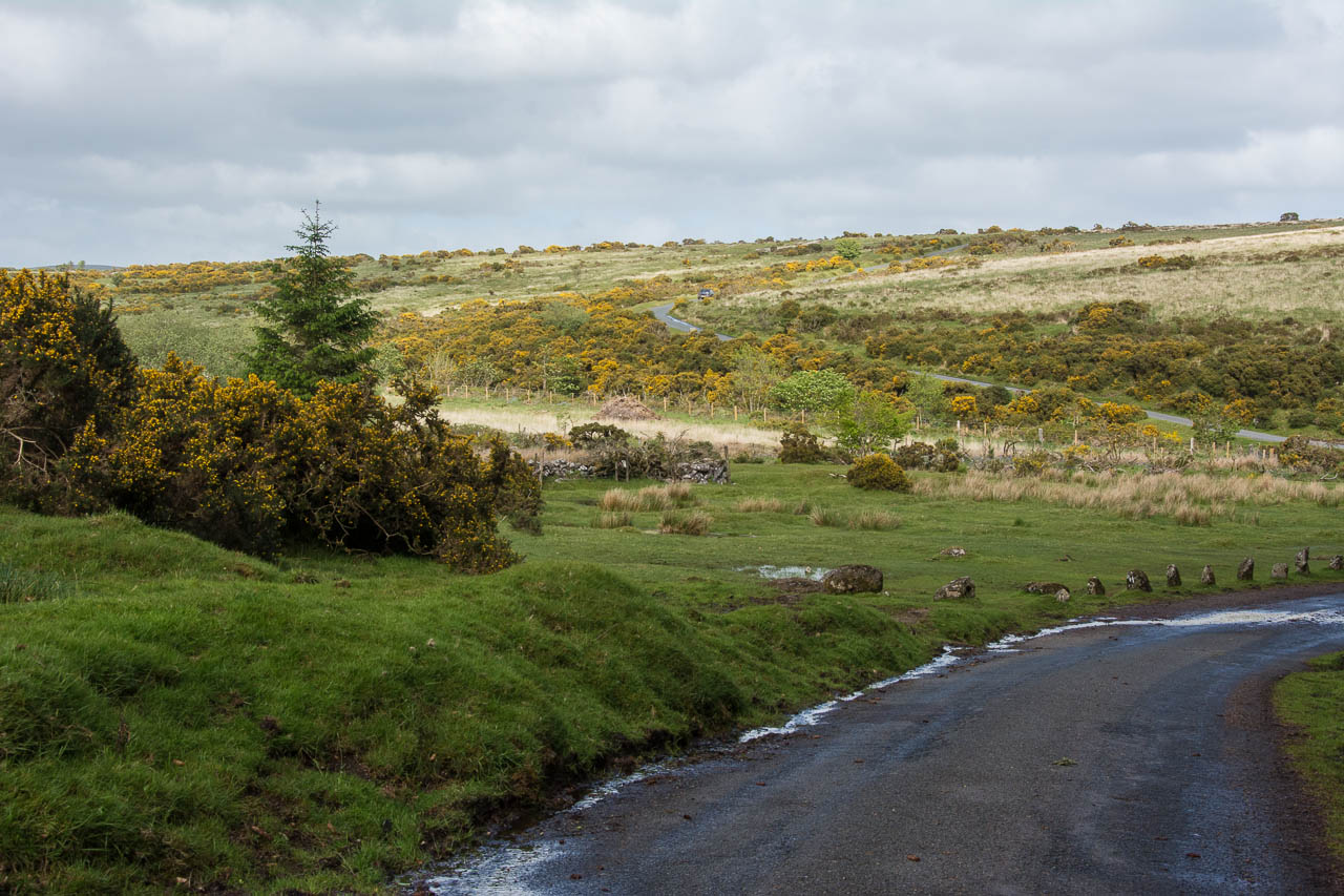 DartmoorNationalpark-39-4617