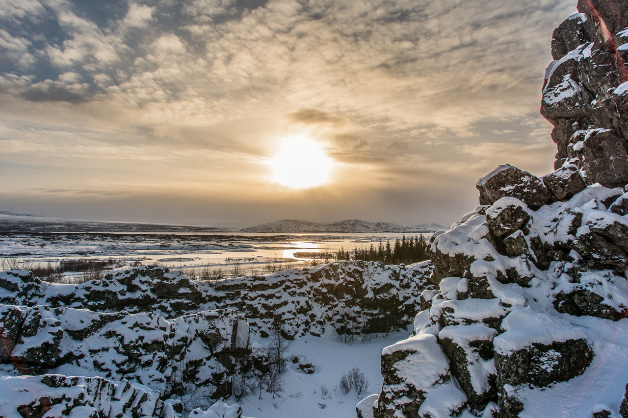 Thingvellir Winter