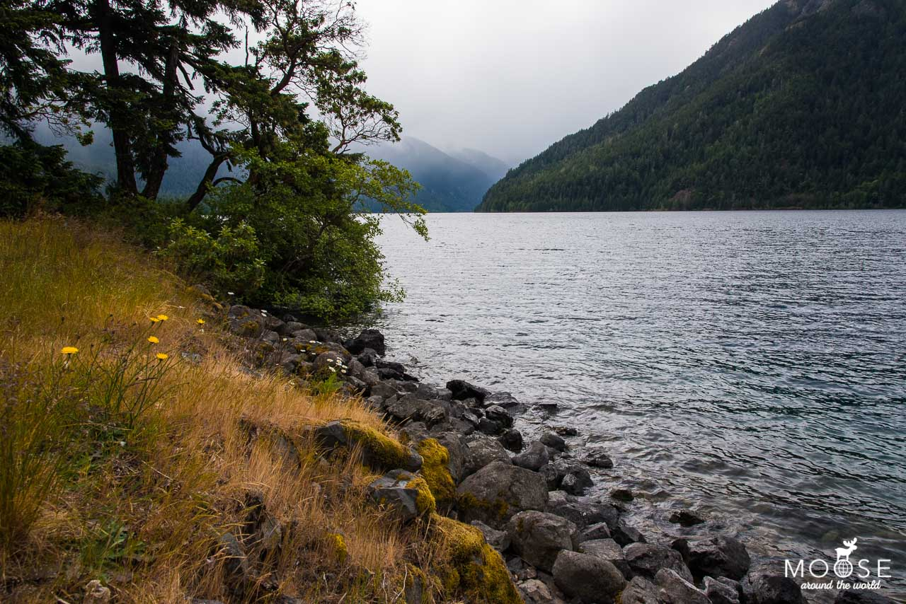 Lake Crescent Olympic Nationalpark