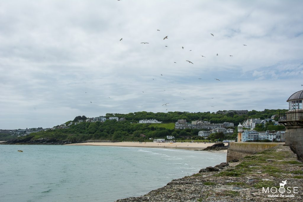 StIves_Cornwall-30-5185