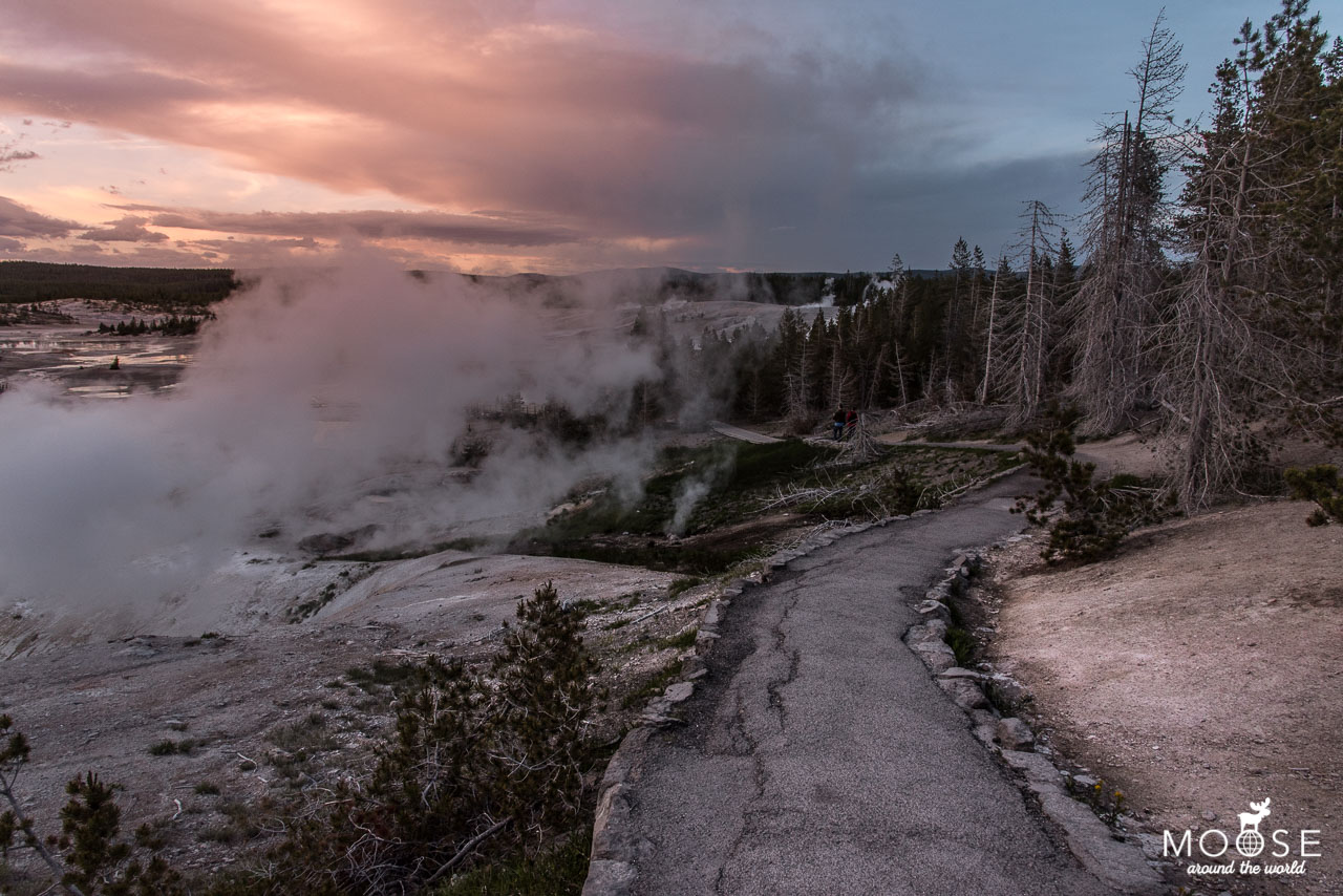 Norris Geyser Basin Yellowstone Nationalpark