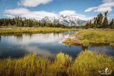Schwabacher's Landing Grand Teton Nationalpark