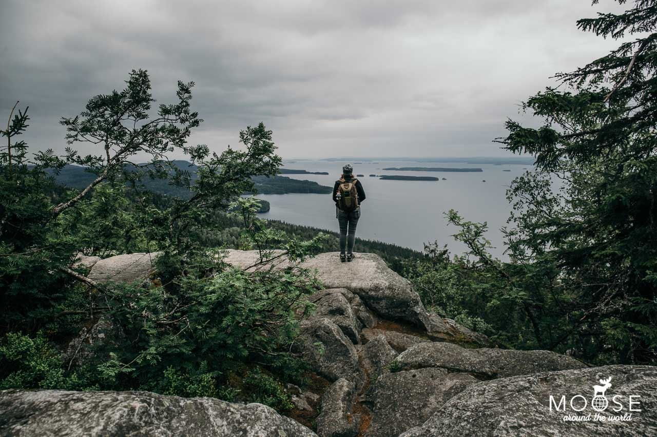 Koli Nationalpark Ukko Koli
