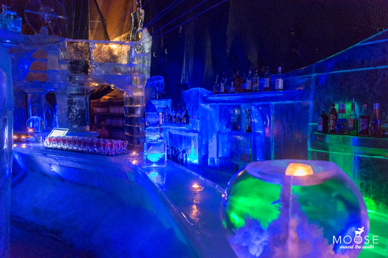 Eisbar Magic Ice Lofoten Museum Eisskulpturen